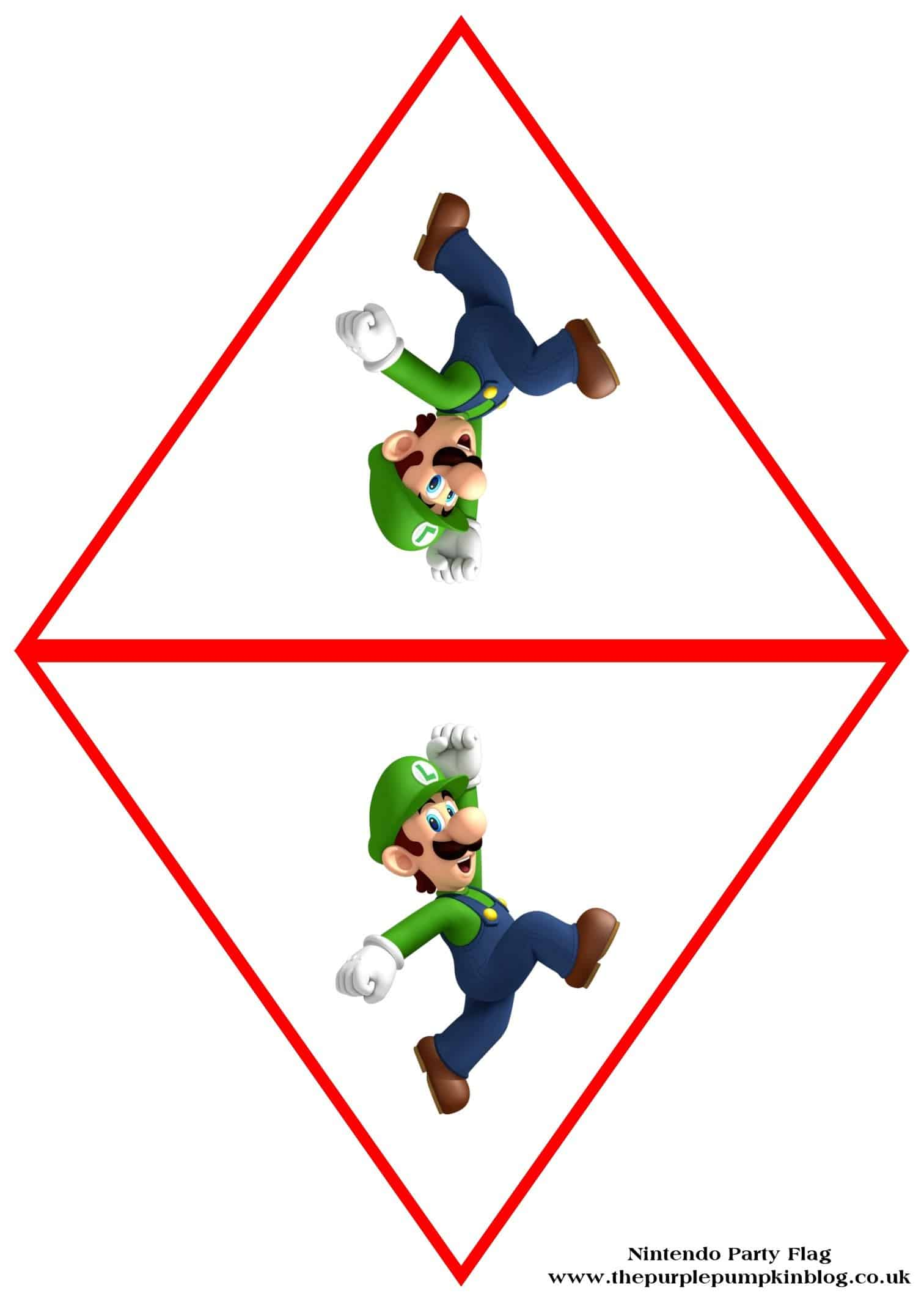 nintendo-party-flag-luigi