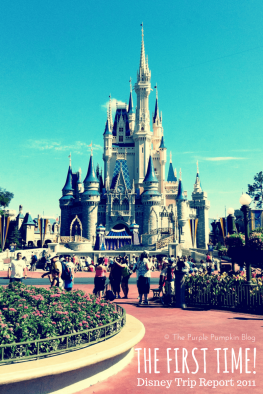 The First Time! Disney Trip Report 2011