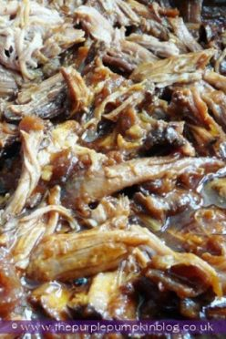 hawaiian-pulled-pork-slow-cooker-crock-pot-recipe (8)