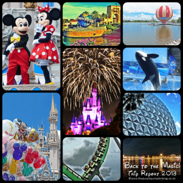Back to the Magic 2013 Trip Report