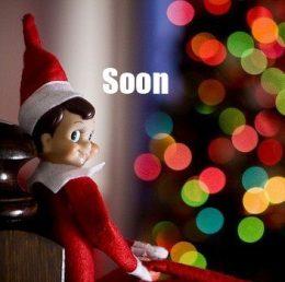 Elf on the Shelf - SOON