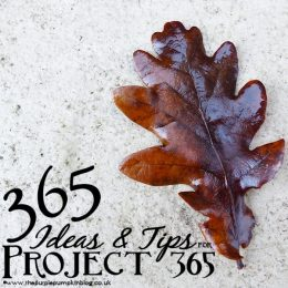 365 Ideas & Tips for Project 365