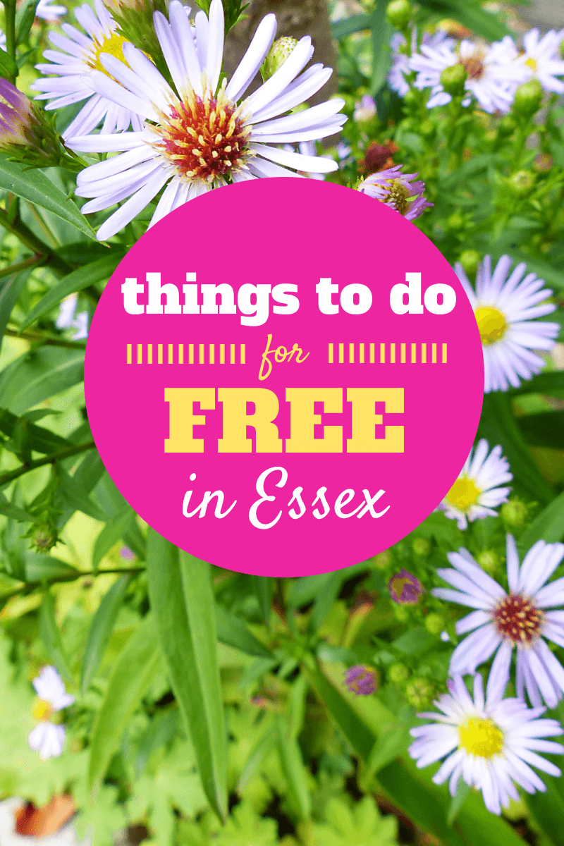 Things To do For Free In Essex