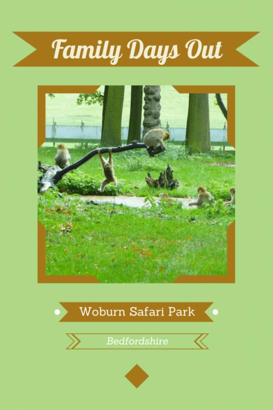 Woburn Safari Park