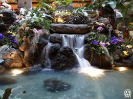polynesian-resort-waterfall
