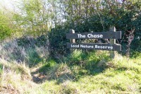 Things To Do For Free in Essex: The Chase Nature Reserve