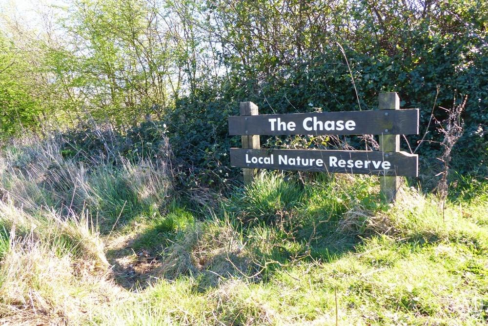 the-chase-nature-reserve-dagenham-essex82