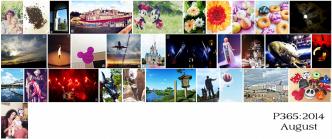P365-2014_august-roundup