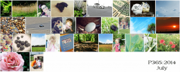 Project 365:2014 - July Roundup