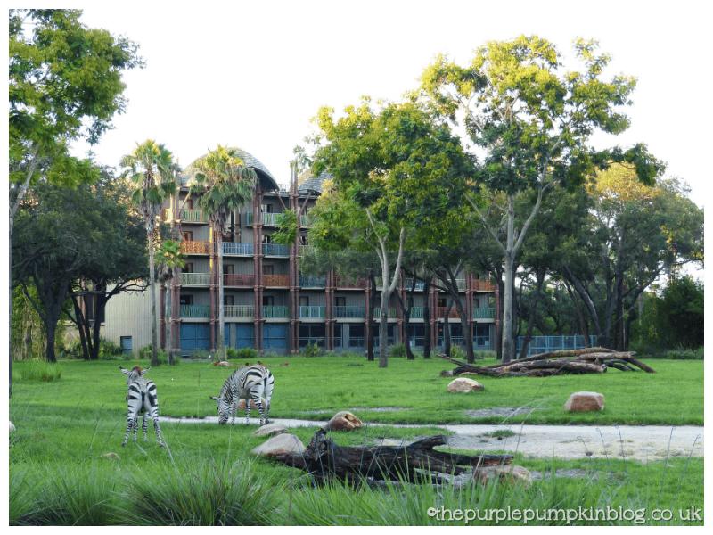 Animal Kingdom Lodge Savannah