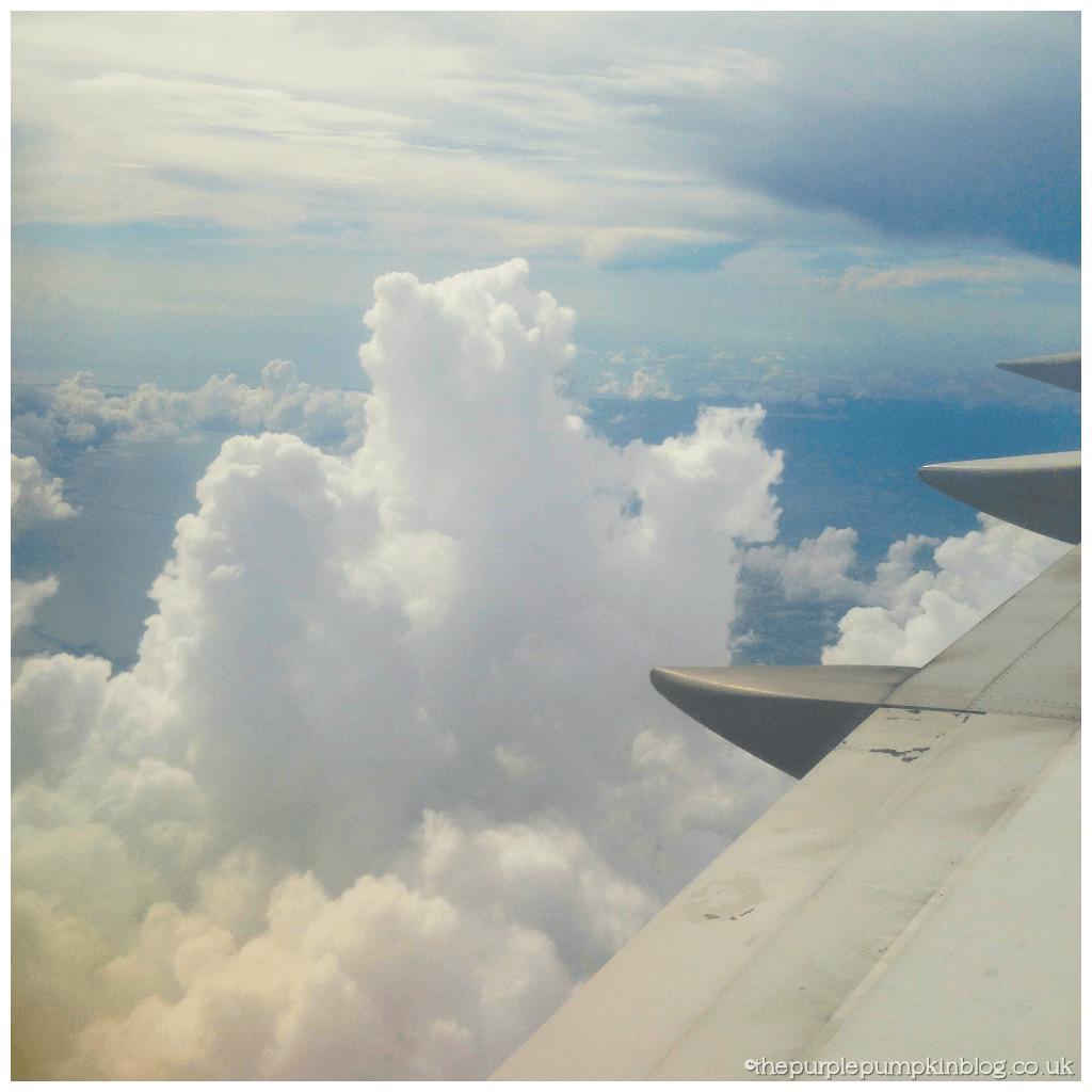Delta Airlines - Atlanta to Orlando 4