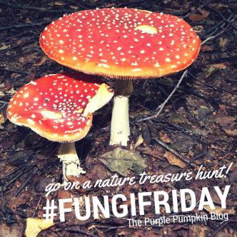 #FungiFriday - Go On A Nature Treasure Hunt