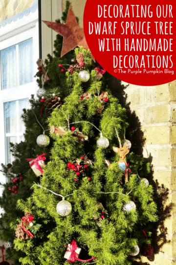Decoration our Dwarf Spruce Tree with Handmade Decorations