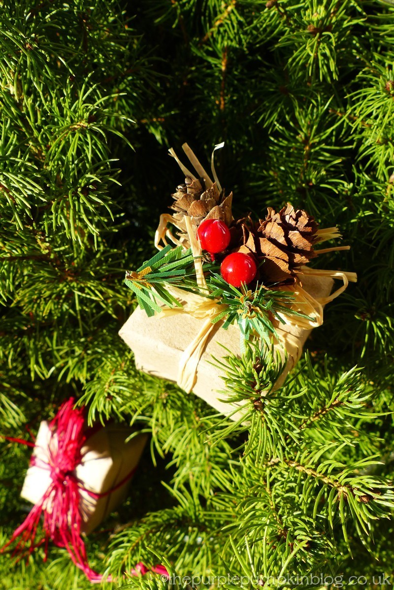 Decorating our Dwarf Spruce Tree