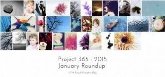 January Roundup Project 365 2015