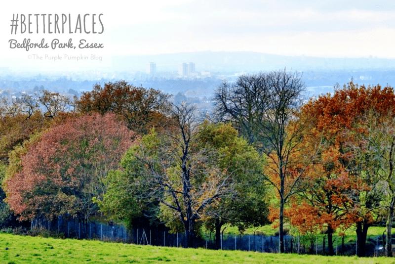 Bedfords Park Essex - #BetterPlaces
