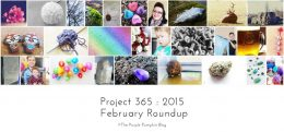 February Roundup Project 365 2015
