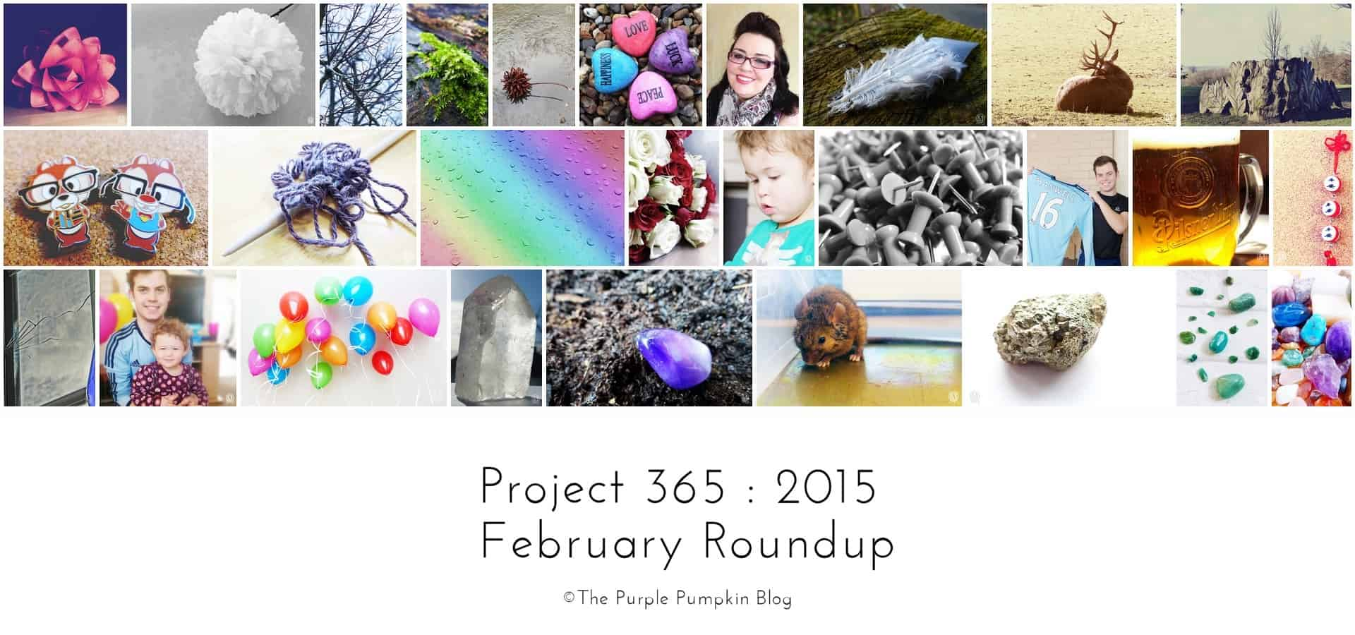 February - Project 365 : 2015 | RoundUp