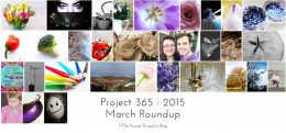March Roundup Project 365 2015