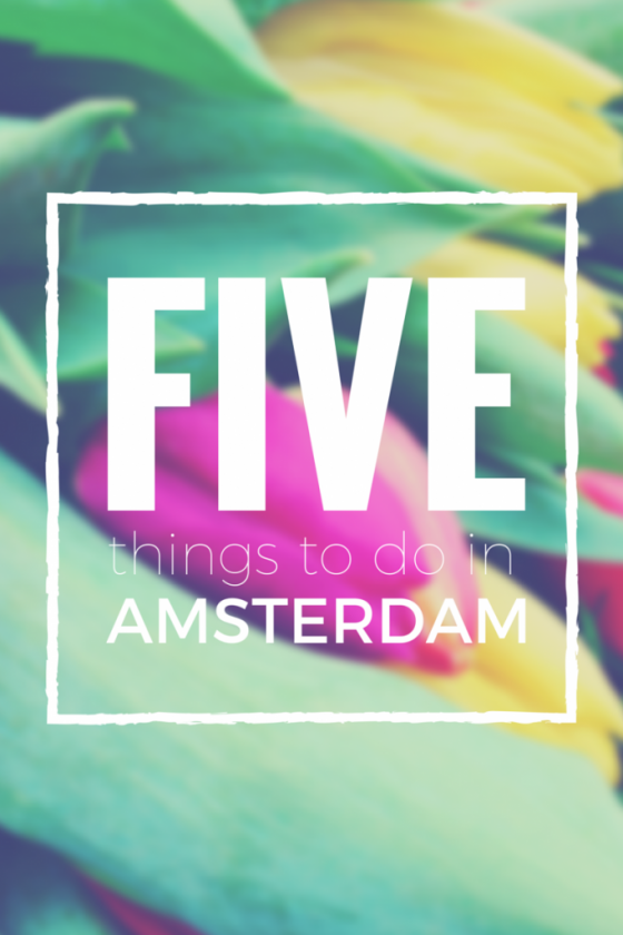 Five Things To Do In Amsterdam