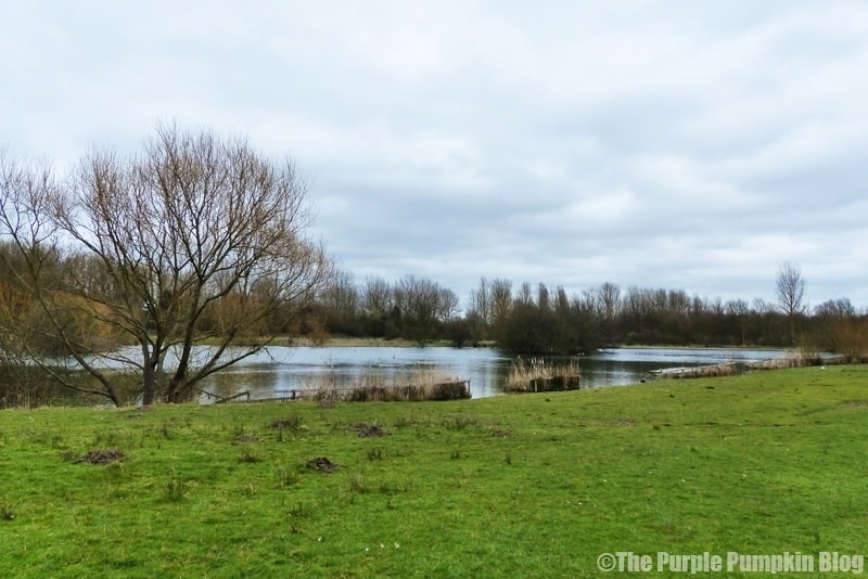 Havering Country Park Cafe
