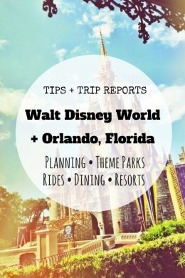 Walt Disney World Orlando, Florida Tips Trip Reports
