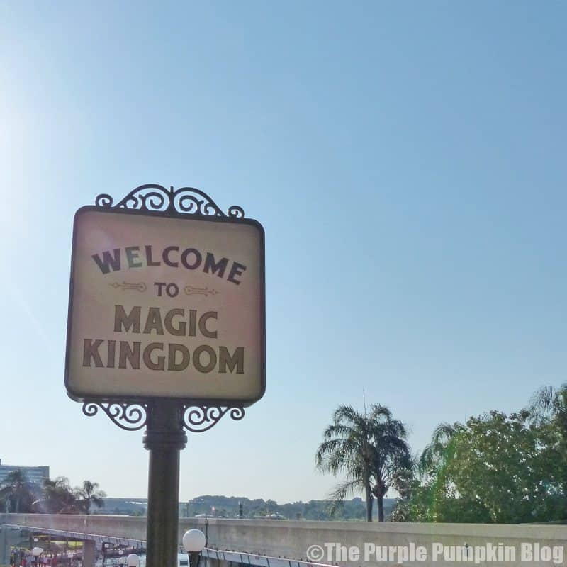 Welcome To Magic Kingdom