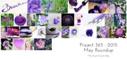 May Roundup Project 365 2015