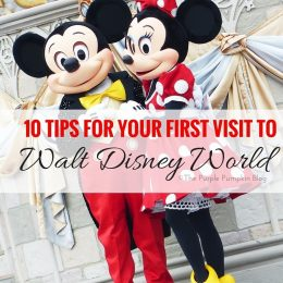 10 Tips For Your First Visit To Walt Disney World