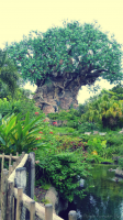 Animal Kingdom iPhone Disney Wallpaper