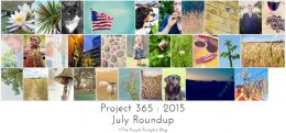 July Roundup Project 365 2015