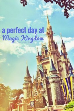 A Perfect Day at Magic Kingdom