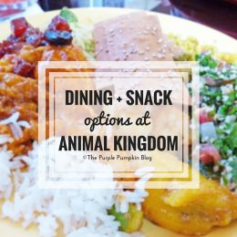 Dining Snack Options at Animal Kingdom