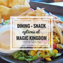 Dining Snack Options at Disney