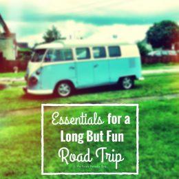 Essentials for a Long But Fun Road Trip