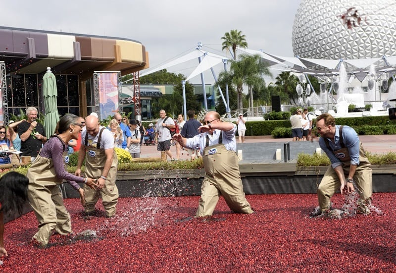 Epcot International Food + Wine Festival