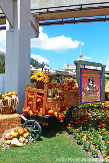 Magic Kingdom Halloween Decorations