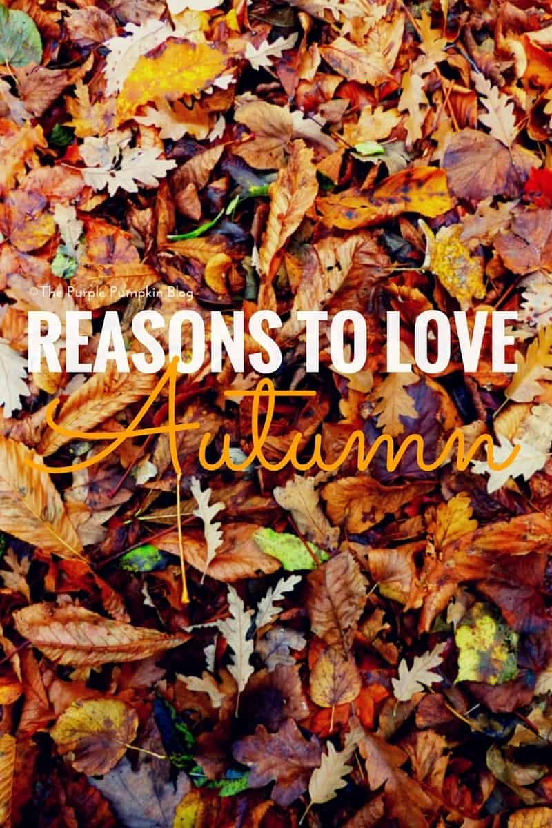 Reasons to LOVE Autumn! So many wonderful things to enjoy during the fall season!
