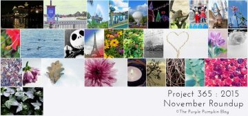 November Roundup Project 365 2015