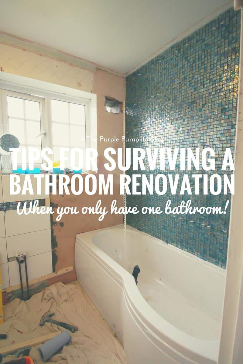 Tips for surviving a bathroom renovation - when you only have one bathroom!