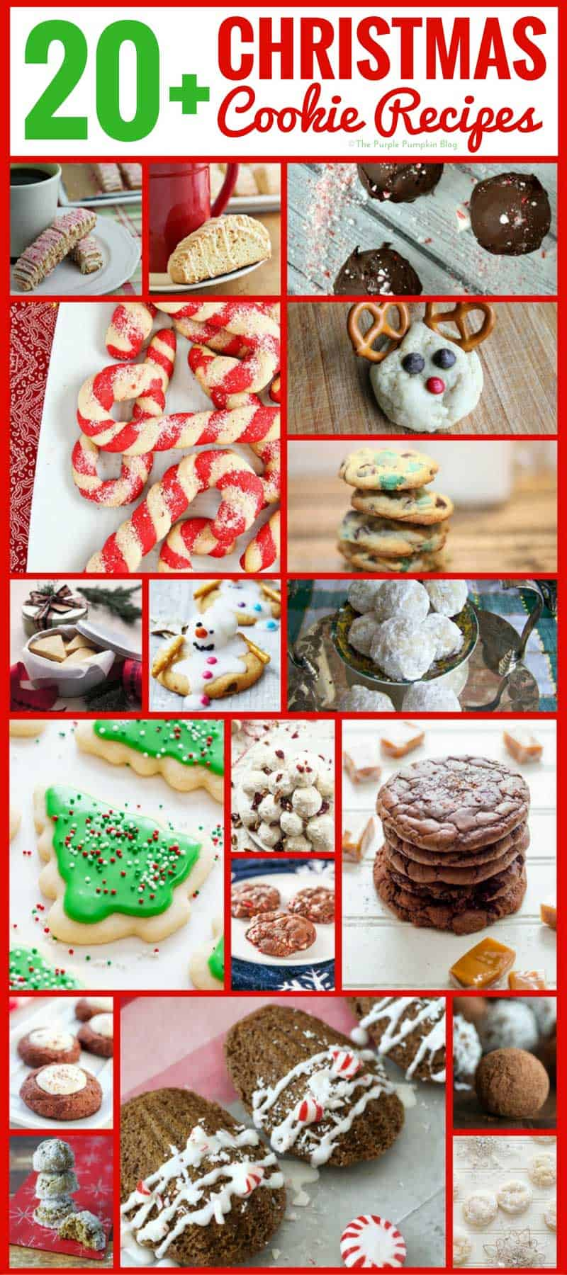 Bbc food recipes christmas cookies sparkling vanilla christmas bbc food recipes christmas cookies forumfinder Choice Image
