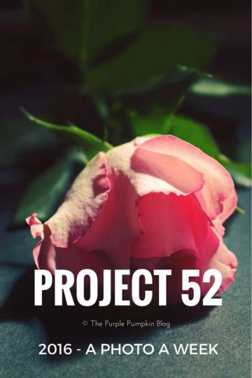 Project 52:2016 - A Photo a Week for One Year