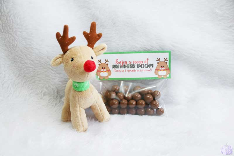 Reindeer Poop Free Printable Labels. These make fab silly stocking fillers! Add chocolate malt balls to a clear food bag and top off with this label.