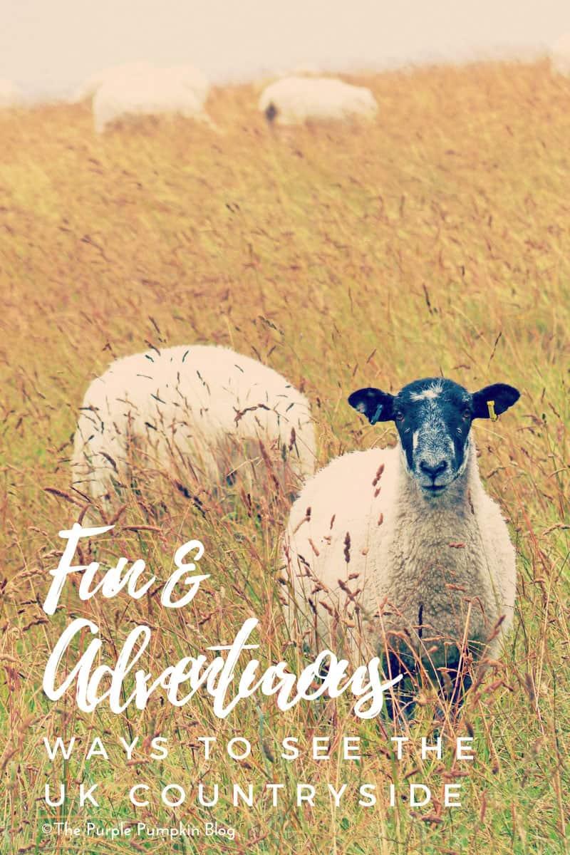 Fun & Adventurous ways to see the UK countryside