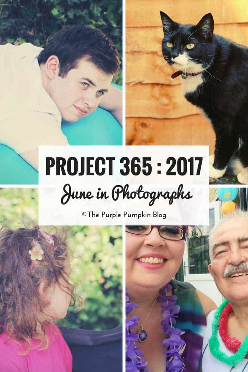 Project 365 : 2017 - June in Photographs