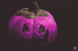 Project 365 - 2017 - Day 299 - a purple pumpkin
