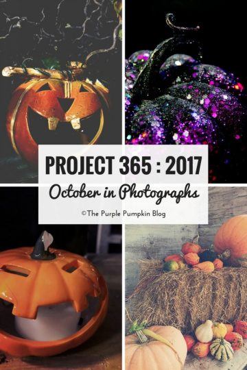 Project 365 : 2017 - October - a month of photos