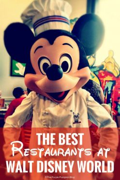 The Best Restaurants at Walt Disney World! There are so many dining options at Walt Disney World, from snacks and quick counter service; to character meals, buffets, and signature fine dining. But which ones are the best? Find out here!