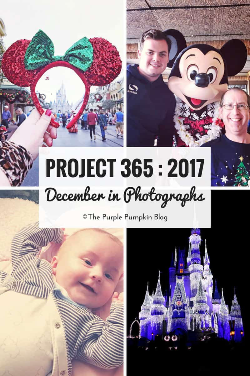Project 365 : 2017 - December