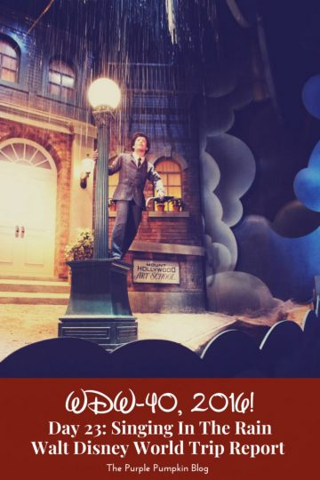Day 23: Singing In The Rain / WDW-40, 2016